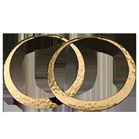 IMG - Earrings Factoid Type 61479 200x200
