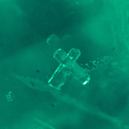 IMG - Emerald Microscope View 2 149651 496x496