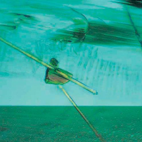 IMG - Emerald Microscope View 3 48306 496x496