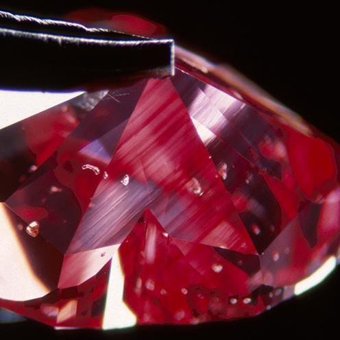 IMG - FC Diamond Microscope View 3 25476 496x496