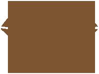 IMG - Gem Factoid Color - Brown